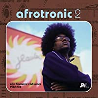 Afrotronic 2: Afro Flavoured Club Tunes Tribe 2