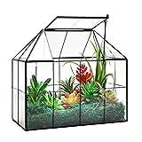 Large Glass Terrarium House Planter – Succulent Plant Terrarium House Shape Glass Greenhouse Terrarium with lid 9.8'X7.9'X5.9' NA