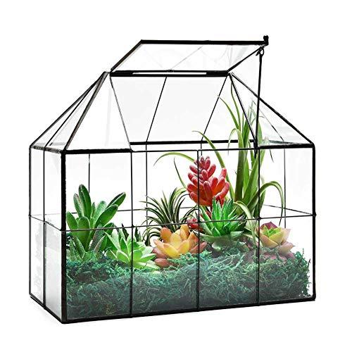 Large Glass Terrarium House Planter – Succulent Plant Terrarium House Shape Glass Greenhouse Terrarium with lid 98quotX79quotX59quot NA
