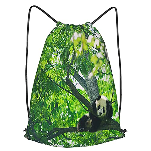 AndrewTop Mochilas de Cuerdas Unisex,Panda bebé descansando sobre un árbol,Impermeable Mochila con Cordón,adulto Niños exterior Mochilas Casual,yoga Bolsas de Gimnasia