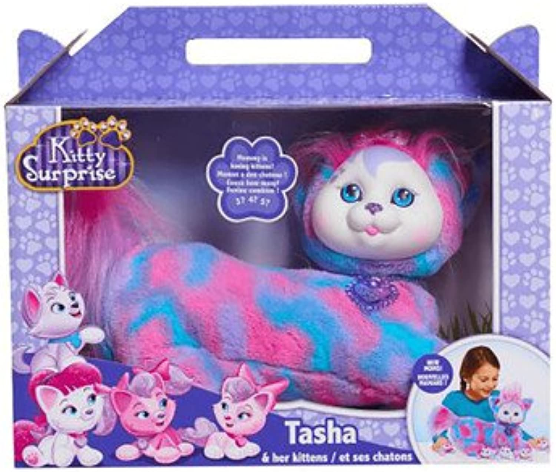 Kitty Surprise Tasha and her Kittens