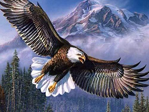 DIY 5D diamante pintura mosaico águila voladora animal punto de cruz cristal diamantes de imitación bordado artesanía para adultos niños decoración del hogar regalo 40X50Cm