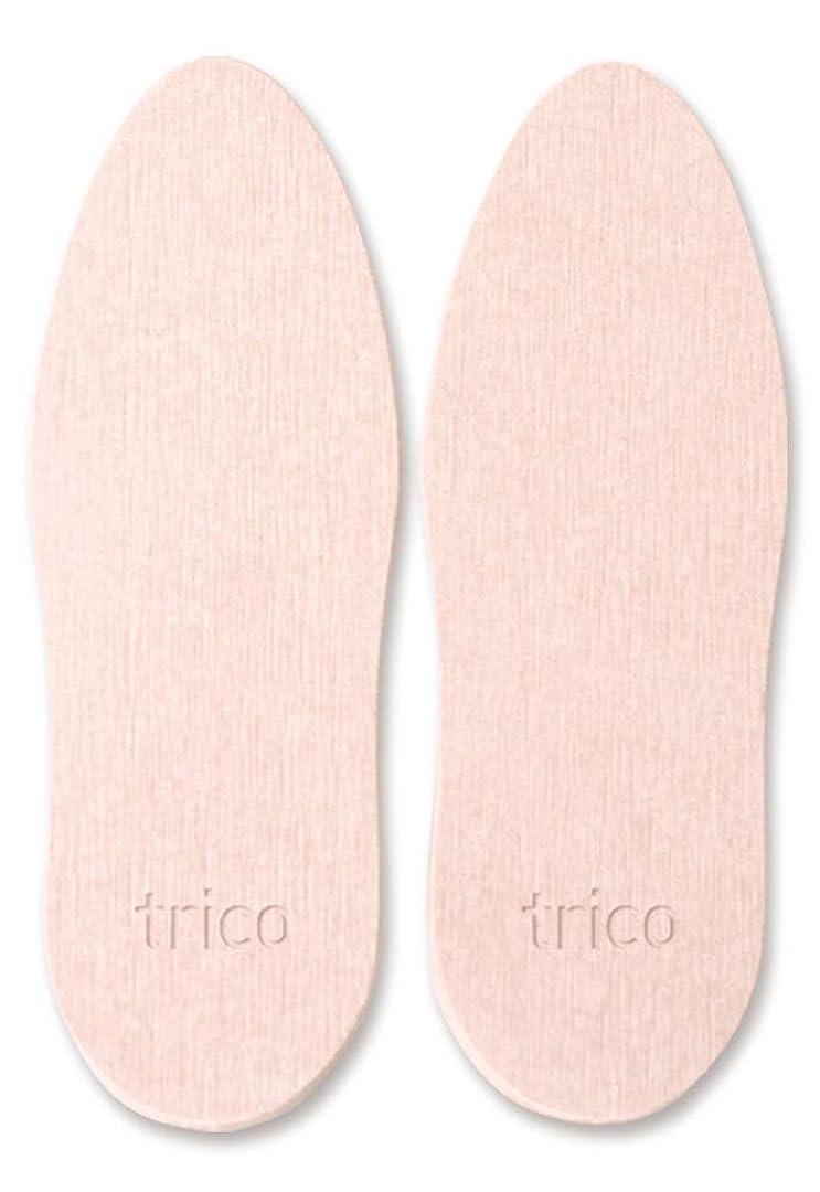 置換電報控えるtrico 靴の消臭 珪藻土 シューズドライプレート ピンク CTZ-18-03