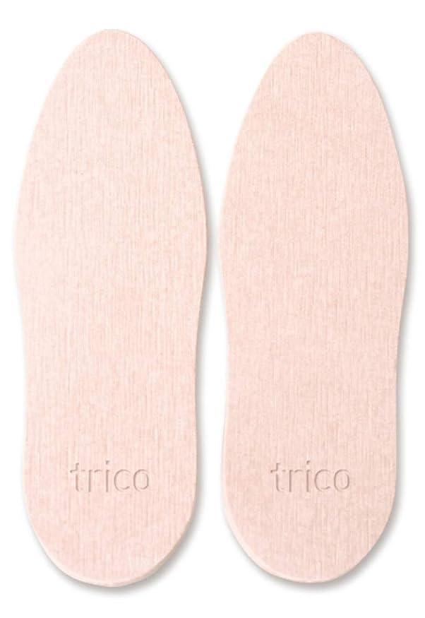 コロニアル開始浴trico 靴の消臭 珪藻土 シューズドライプレート ピンク CTZ-18-03
