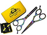 Professionnel Ciseaux de coiffure - Ciseaux Barber Salon - Ciseaux - Ciseaux de coupe de cheveu 5.5' Couper les cheveux Ciseaux - Ciseaux Coupe Effiler Désépaissi