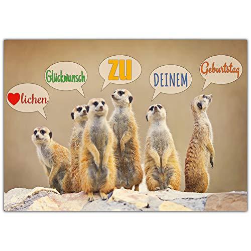 A4 XXL Geburtstagskarte ERDMÄNNCHEN mit Umschlag - edle Klappkarte mit lustigen Erdmännchen - Glückwunschkarte zum Geburtstag Karte von BREITENWERK