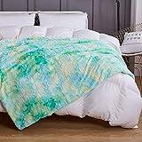 COCOPLAY W Fuax Fur Throw Blankets, Super Soft Fuzzy Lightweight Luxurious Cozy Warm Fluffy Plush Sherpa Mint Rainbow Microfiber Blanket for Bed Couch Living Room (Aqua, Throw(50'x65'))