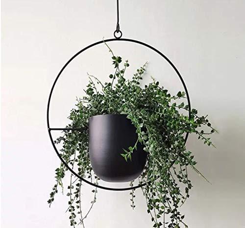 Cratone Hängender Pflanzenaufhänger Metall Schwarzer Bolo Blumenampel Decke hängender Übertopf für Zimmerpflanzen, Sukkulenten, Luftpflanzen, Kakteen