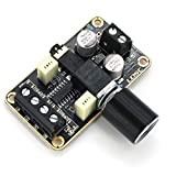 DEVMO Audio Amplifier Board,5W+5W Mini Amplifier Board PAM8406 DC 5V Digital Stereo Power Amp 2.0 Dual Channel Class D Amplify Module for Speaker Sound System DIY