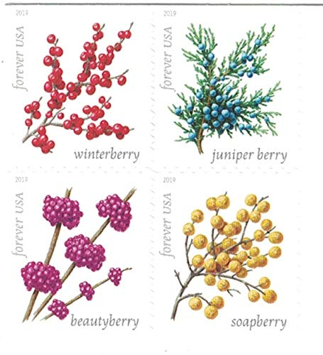 USPS Winter Berries Forever Stamps - Sheet of 20 Postage Stamps
