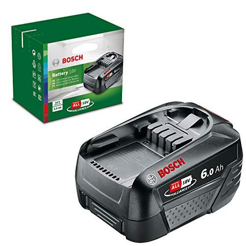 Bosch Batterie PBA 18V 6.0Ah W-C (Gamme 18V, 6,0Ah, dans Boîte en Carton)