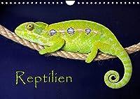 Reptilien (Wandkalender 2022 DIN A4 quer): (Mein) leben im Terrarium (Monatskalender, 14 Seiten )