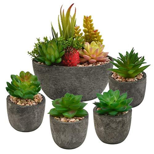 """""""N/A"""" 5 künstlichen Sukkulenten mit Töpfen Künstliche Pflanzen, Pflanze Künstliche Mini Kunstpflanzen Echt Pflanzen Künstlich ideal für Zuhause, Büro und Dekor"""