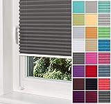 Home-Vision Premium Plissee Faltrollo ohne Bohren mit Klemmträger / -fix (Graphit, B55cm x H120cm) Blickdicht Sonnenschutz Jalousie für Fenster & Tür