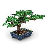 TENHORSES Bonsai Building Kit Set, Creative Bonsai Tree Building Bricks, Unique...