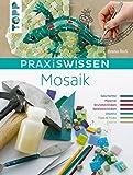 PraxisWissen Mosaik: Geschichte, Materialien, Grundtechniken und Projektideen
