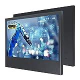 WIFIGDS - Monitor da parete Full HD da 21,5 pollici (1920 x 1080), 60 Hz (HDMI+VGA, DC,12 V-3 A) LCD per computer Monitor di sicurezza a livello industriale/monitor portatile
