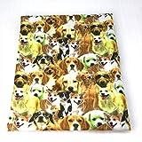 David Accessories C485 1044595001 Stofftier Hund für