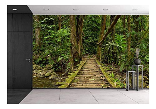 wall26 - Low Angle View of a Wooden Bridge in the Ecuadorian Jungle. - Removable Wall Mural | Self-adhesive Large Wallpaper - 66x96 inches