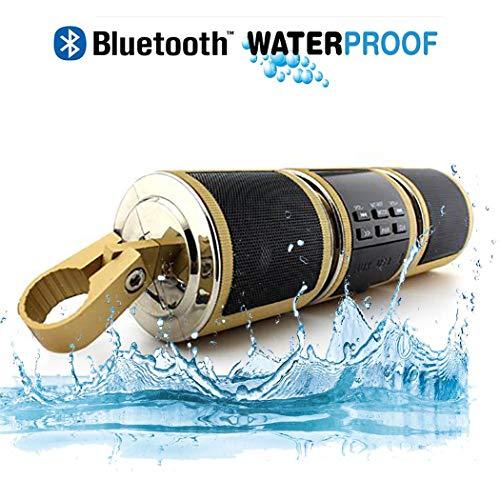 TYXS Bluetooth Lautsprecher for Motorrad, wasserdichte Stufe 4, Unterstützung MP3-Player Audio FM Radio USB/TF/AUX-Eingang, Geeignet für das Motorradfahren im Freien,Gold