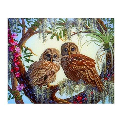 5D DIY Diamond Painting Two Owls Diamond Embroidery 3D Diamond Cross Stitch Diamond Mosaic Pictures of Rhinestones