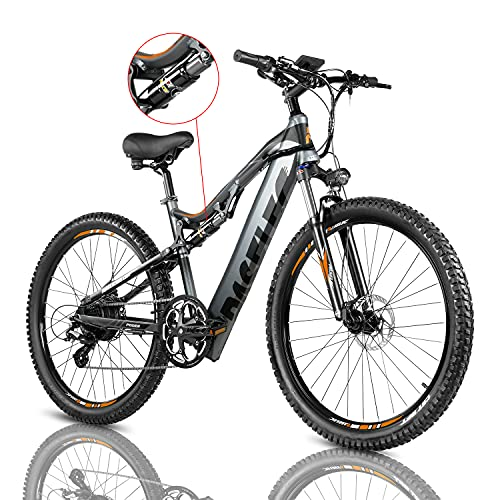 PASELEC Electric Bikes for Adult, Electric Mountain Bike, E-Bike Moped with 48V 13ah Lithium Battery, 500W Professional E-MTB (Grey)