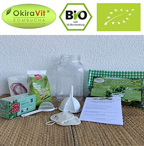 Kombucha-Komplett-Set OkiraVit Classic-Premium mit 3 L Gärglas, Anleitung und Anwuchsgarantie. Aus...