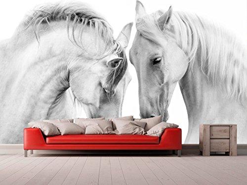Fotomural Vinilo para Pared Caballos Blancos | Fotomural para Paredes | Mural | Vinilo Decorativo | Varias Medidas 200 x 150 cm | Decoración comedores, Salones, Habitaciones.