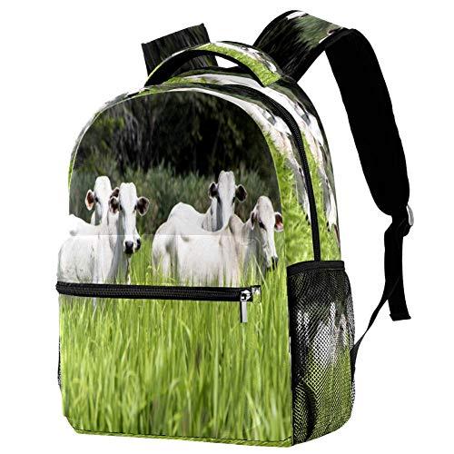 Hello Summer Lime Fruit - Mochila escolar con diseño de frutas, estampado 6 (Multicolor) - bbackpacks004