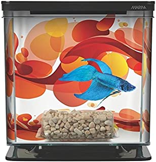 Best marine fish starter kit Reviews