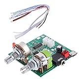 Rtengtunn Tablero AMP del Amplificador de Clase D estéreo Digital Envolvente 3D de Doble Canal 5V 20W 2.1