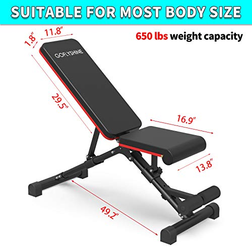 GOFLYSHINE Flat Bench Adjustable Weight Bench for Home Exercise Bench Strength Training Benches Multi-Position Workout Bench for Gym Fitness Full Body Weight Lifting Training (LY-Dumbbell Bench-6)