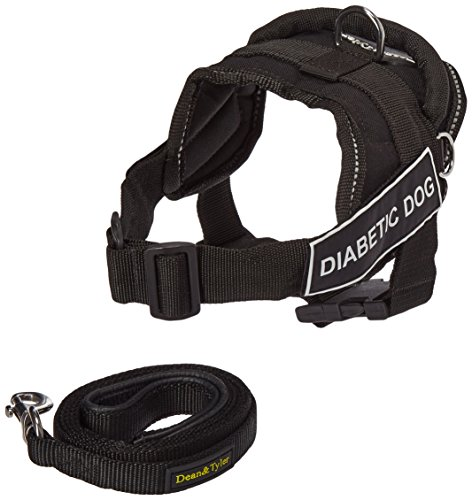 """Dean and Tyler Bundle - One """"DT Fun Works"""" Harness, Diabetic Dog, Reflective, XS (20"""" - 23"""") + One """"Padded Puppy"""" Leash, 6 FT Stainless Snap - Black"""