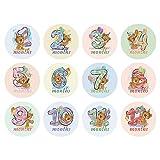 F-blue 12pcs del bebé Pegatinas de Dibujos Animados mensuales Milestone tickersPhotograph Atrezzo Mujeres Adhesivos Mes de Embarazo