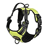 4XPAW Dog Harness with Padded Handle,Reflective in Night,Nylon Oxford Mesh Soft Padding Lining, No-Pull Metal D Ring,Quick Release Buckle (L (Chest 20'-34'), Green) …