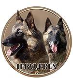 lukka tervueren - cane da pastore belga adesivo 15 cm