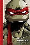 Teenage Mutant Ninja Turtles: The IDW Collection Volume 1 (TMNT IDW Collection)