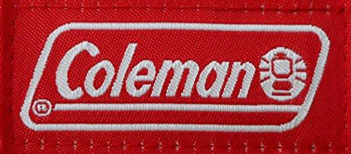 Coleman(コールマン)『偏光サングラスオーバーグラス(CO3012)』