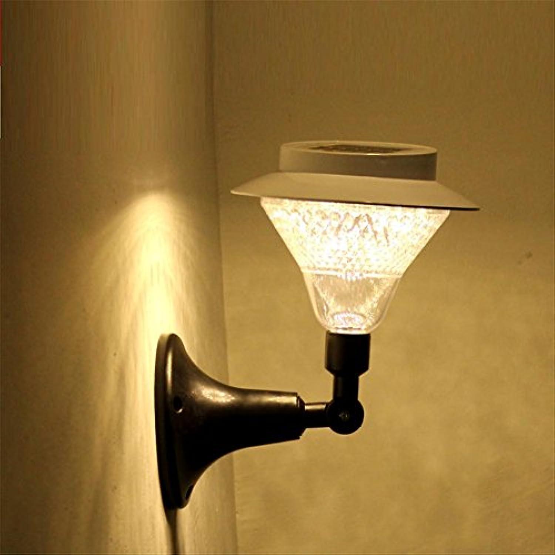 HomJo Solar LED Garden Spotlight Edelstahl Solar Rasen Licht für Garten dekorative Sonnenenergie Outdoor Solar Lampe Luminaria , 13