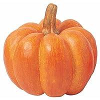 ジャイアントパンプキン(L)(VF0230L)[食品サンプル フェイクフード ディスプレイ 野菜 かぼちゃ カボチャ ハロウィン パンプキン]