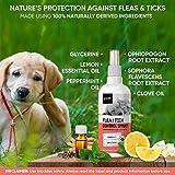 IMG-2 spray antiparassitario per gatti cani