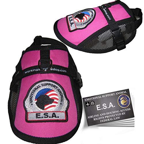 Premium Small Dog Emotional Support Dog ESA Mesh Vest (19