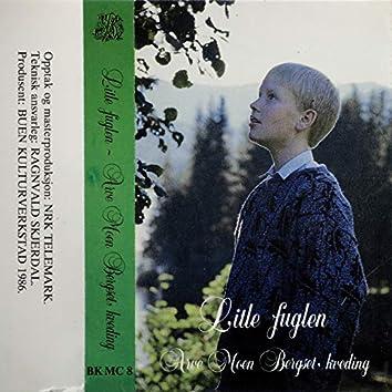 Litle Fuglen - Arve Moen Bergset, Kveding