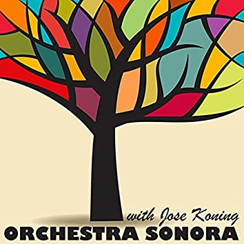 Orchestra Sonora & José Koning (Live)