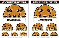 のぞく犬ステッカー [ダックス/ロング/レッド] 犬 車 ステッカー 屋内/屋外対応 UV耐候性 光沢 強粘着 ダックス/ロング/レッド 【2セット入り】