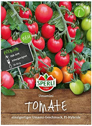 Sperli Premium Tomaten Samen Umamini ; Intensiv aromatische (Umami) Cherrytomate ; Tomaten Saatgut