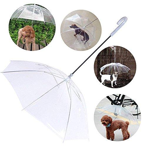 Demarkt Transparent Hund Regenschirm mit Leine PE und Edelstahl