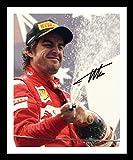 Fernando Alonso Signiert und gerahmt Foto