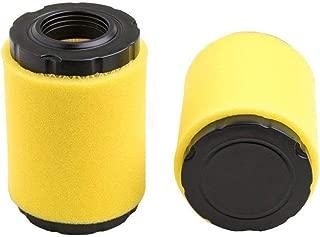 HEYZLASS 2Pack 591334 Air Filter, Replace for Briggs Stratton 796031 594201 OEM Air Cleaner Cartridge, Lawn Mower Air Filter, Plus Foam Pre Filter