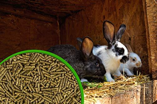 SPH Futter für Kaninchen und Nager 25Kg Sack - 2